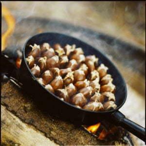 Peter Englander Rosta kastanjer över öppen eld. Snitta toppen. Intas med salt, citron och smör.