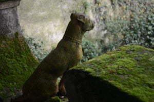 Peter Englander Vackraste hunden jag sett. Terrakotta.